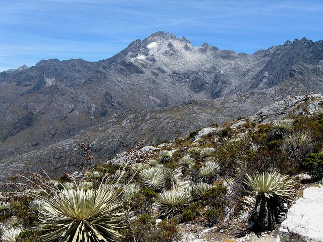 parque-nacional-sierra-nevada-1