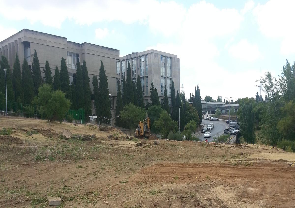 campus-cartuja-obras
