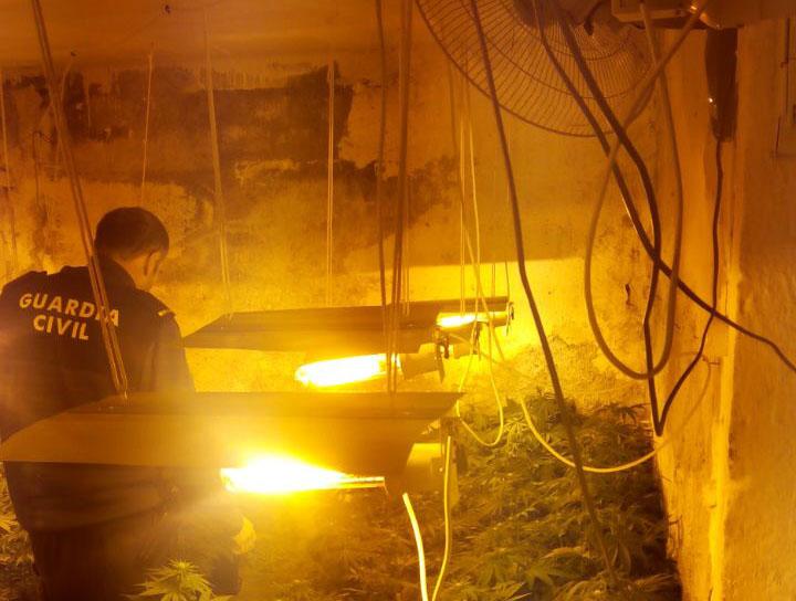 cannabis Pinos Puente
