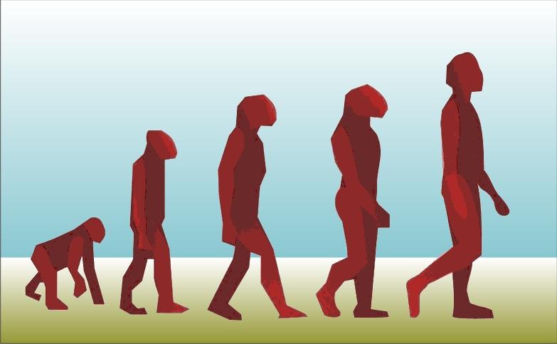 antropologia social evolucion