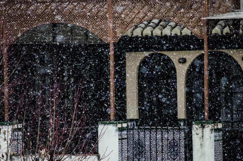 nieve-carlos-gill24