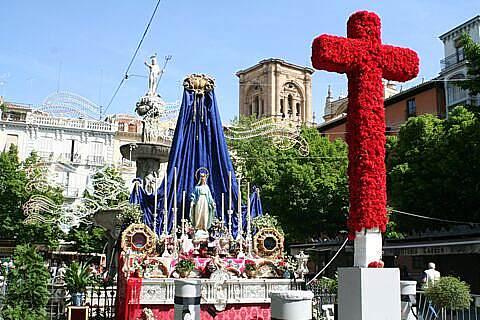 cruz mayo