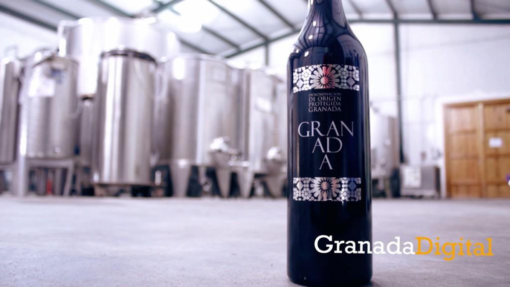 granada-sabores-vino