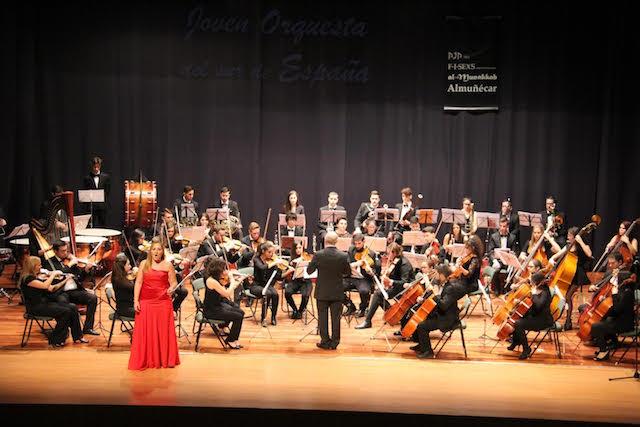 orquesta-sur-