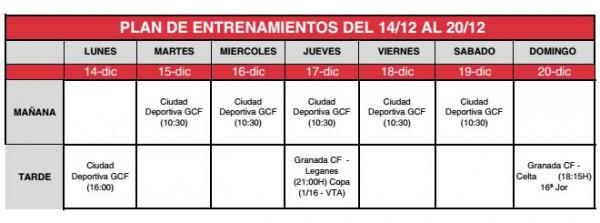 plan entrenamientos 14-20D