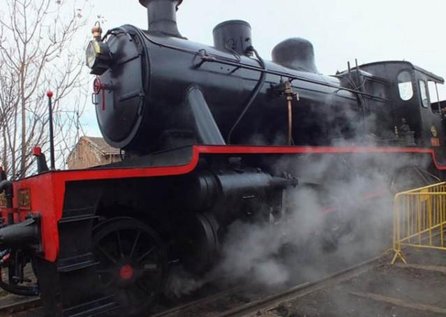 locomotora-indiana-jones-guadix