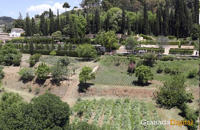 Huerta de la alhambra - Cristina Chaparro 10