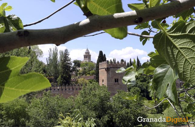 Huerta de la alhambra - Cristina Chaparro 12