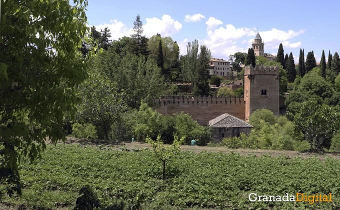 Huerta de la alhambra - Cristina Chaparro 4