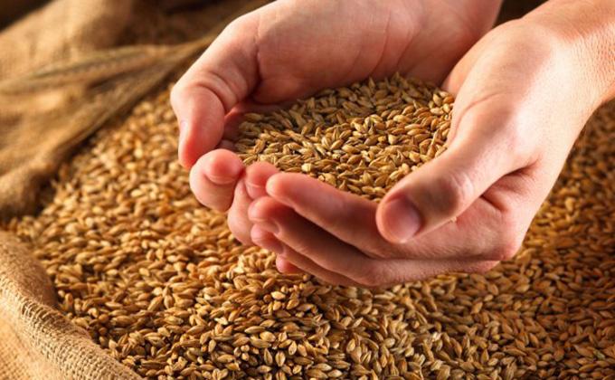 Beneficios-de-los-alimentos-con-fibra