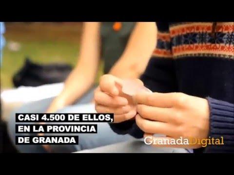 Plan-de-drogodependencia-de-la-Junta-de-Andalucía