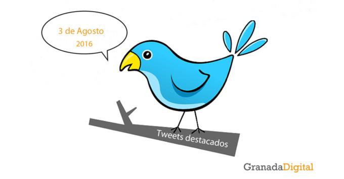tuits-3 de agosto