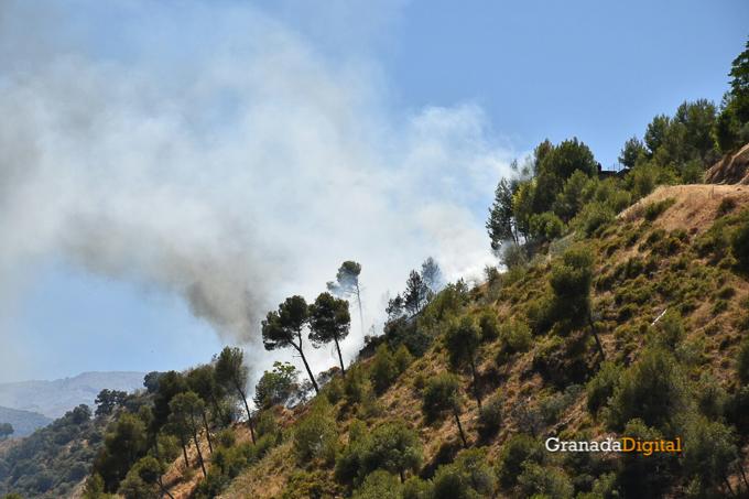 Incendio Cenes Serrallo 2016-2
