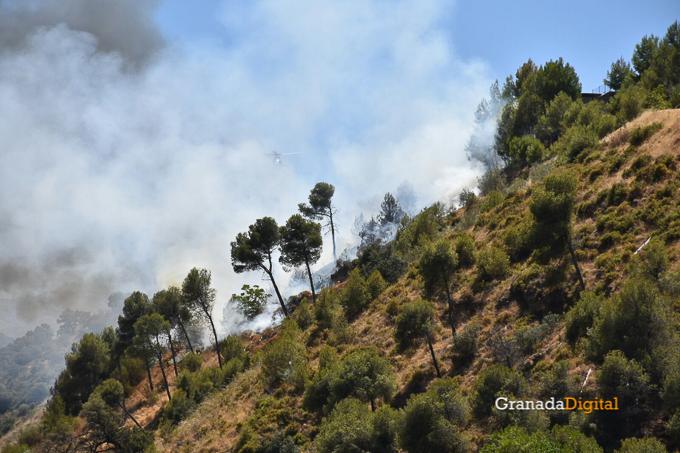 Incendio Cenes Serrallo 2016-3
