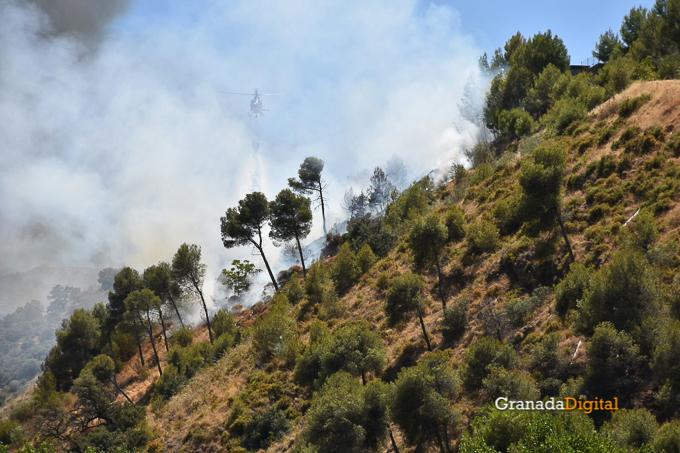 Incendio Cenes Serrallo 2016-5