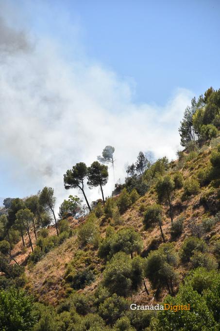 Incendio Cenes Serrallo 2016-6