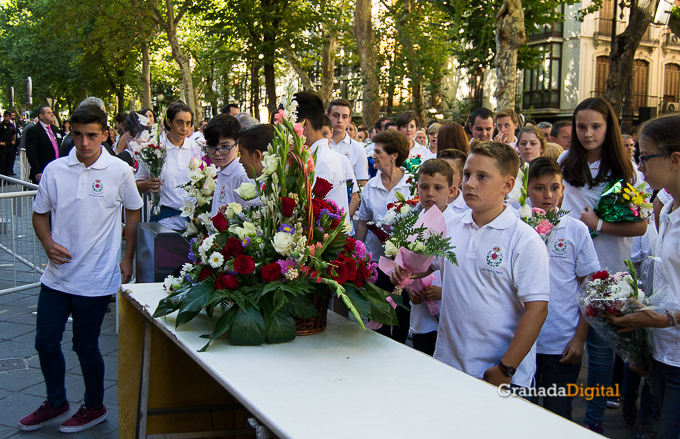 Ofrenda Floral Virgen de las Angustias 2016-12