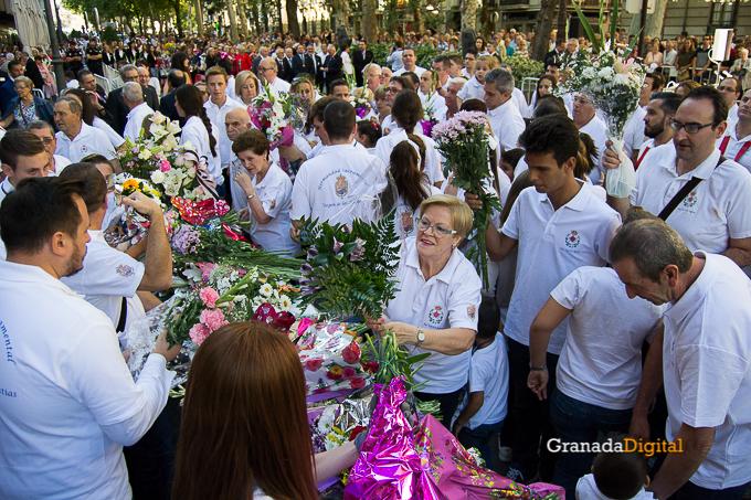 Ofrenda Floral Virgen de las Angustias 2016-13