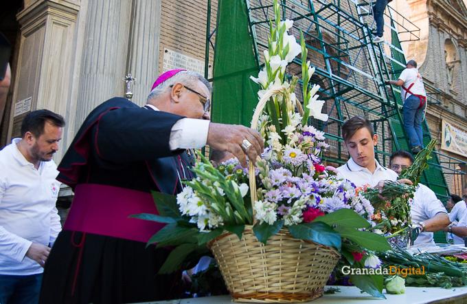 Ofrenda Floral Virgen de las Angustias 2016-18