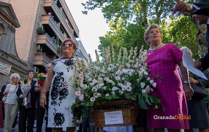Ofrenda Floral Virgen de las Angustias 2016-37