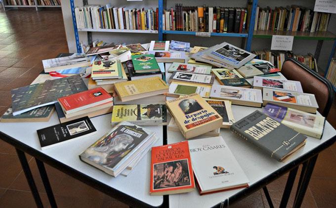 biblioteca-palomas-2