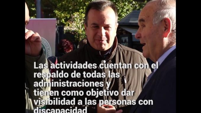 Mercadillo-Solidario-en-Granada-de-las-personas-con-discapacidad