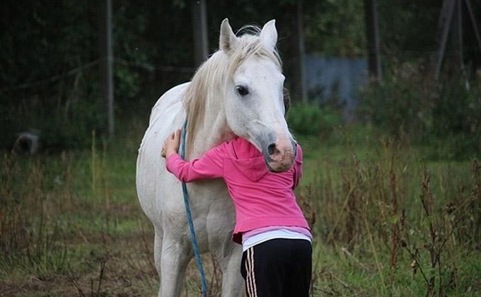 caballo-terapia-equinoterapia