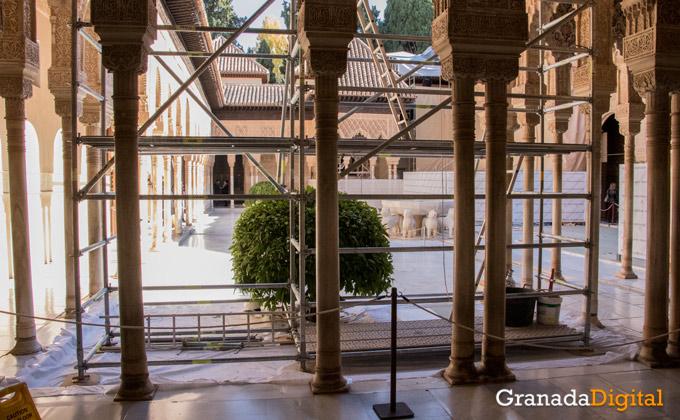 patio-leones-granada-obras-andamios-cubiertas-2jpg