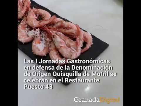 I-Jornadas-Gastronómicas-en-defensa-de-la-Denominación-de-Origen-Quisquilla-de-Motril