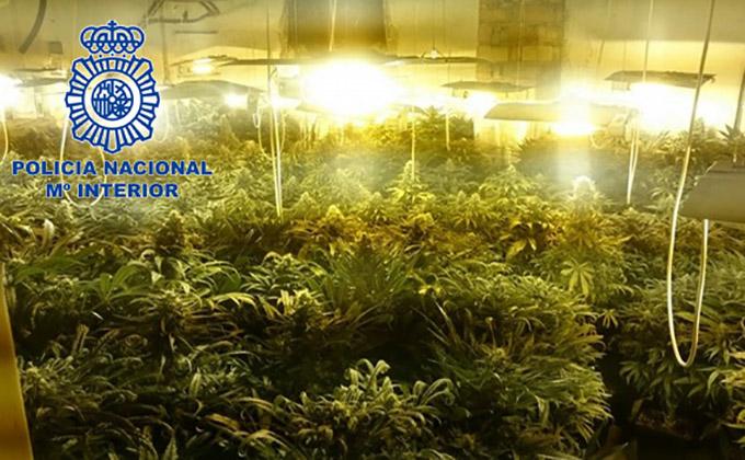 droga-marihuana-policia-nacional-granada