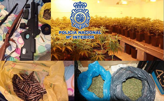 policia nacional marihuana, armas de fuego, plantación