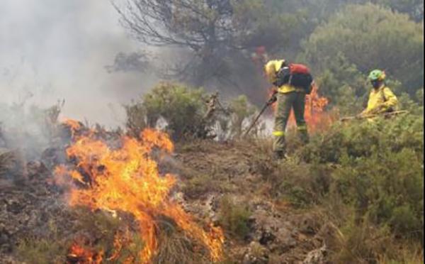 incendio-albuñuelas