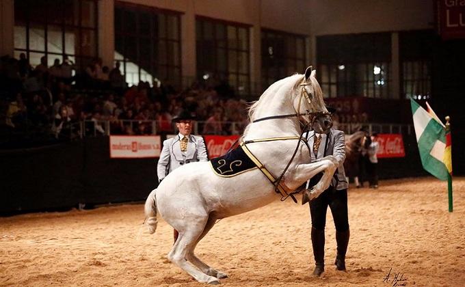 CONCAB feria del caballo