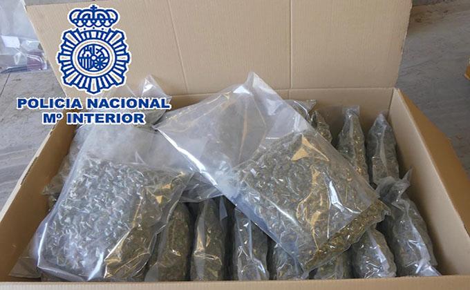 marihuana policia nacionaldroga