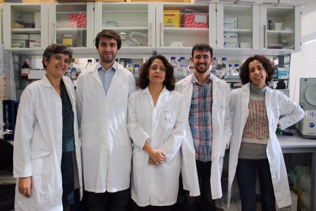 Grupo investigación Leucemia 2