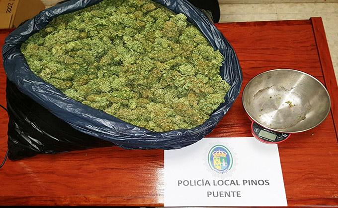 POLICÍA LOCAL INCAUTACIÓN DE MARIHUANA