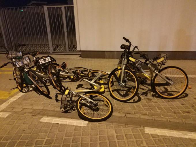 Bici alquiler 12
