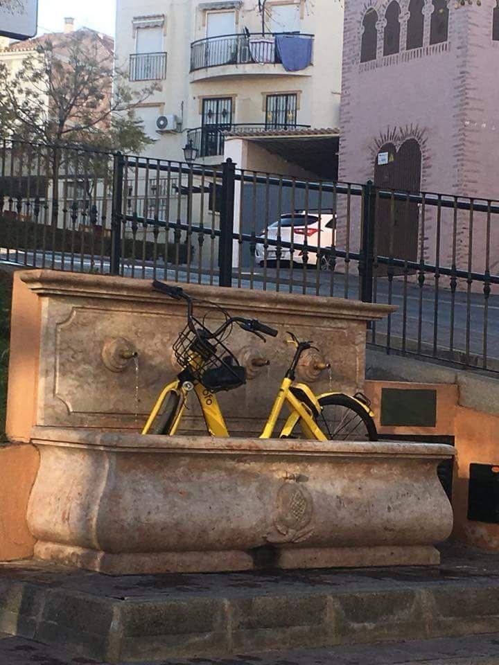 Bici alquiler 11