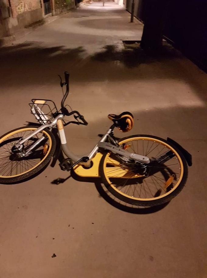 Bicicleta alquiler 2