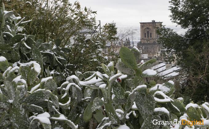 Primera nevada del año en Granada 04