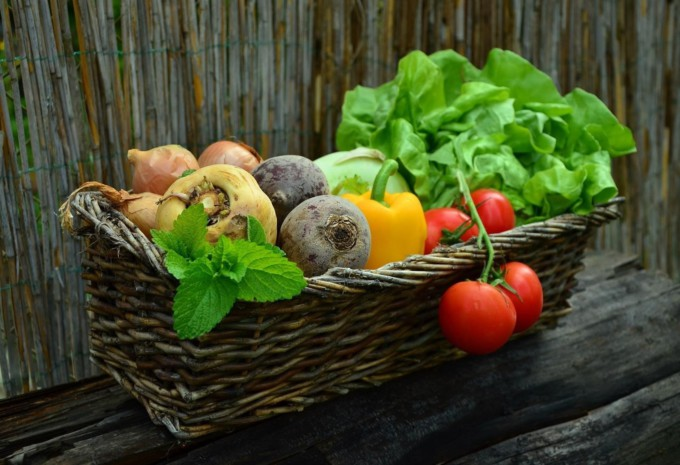 huerta-verdura-horticultura