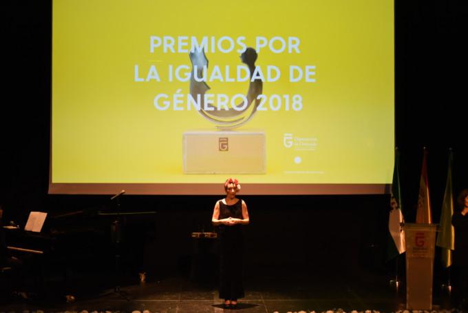 Premios Igualdad Diputación