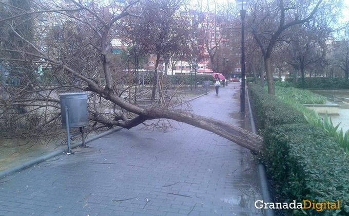 granada-viento