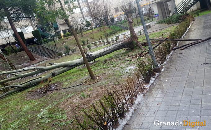 lluvia-granada-4