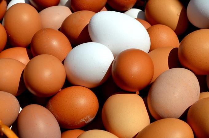 huevos-gallina