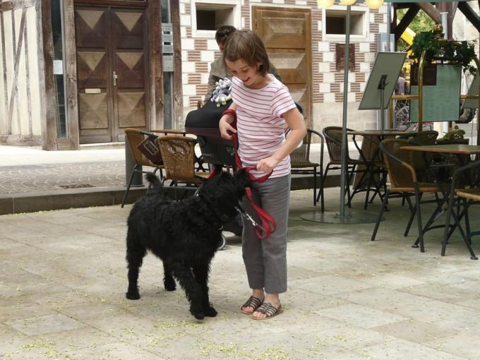niña jugando perro