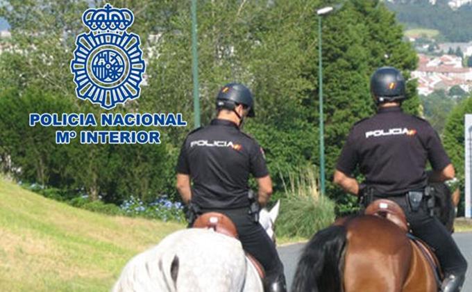 policia nacional caballo corpus