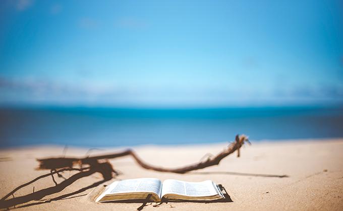 libro playa lectura