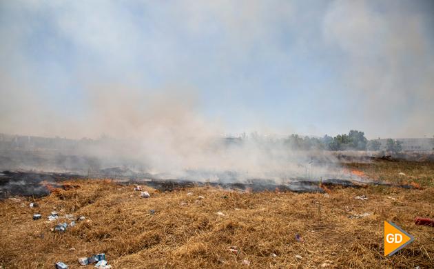Incendio Pulianas (2)