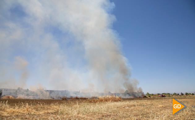 Incendio Pulianas (5)